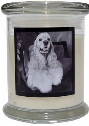 Aroma Paws 355 Breed Candle 12 Oz. Jar - Cocker Spaniel
