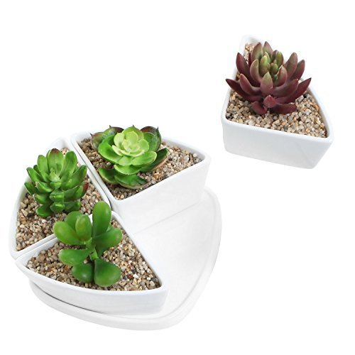 Decorative White Ceramic Centerpiece Planter Set of 4 Small Water Draining Succulent Pots w/ Plant Saucer