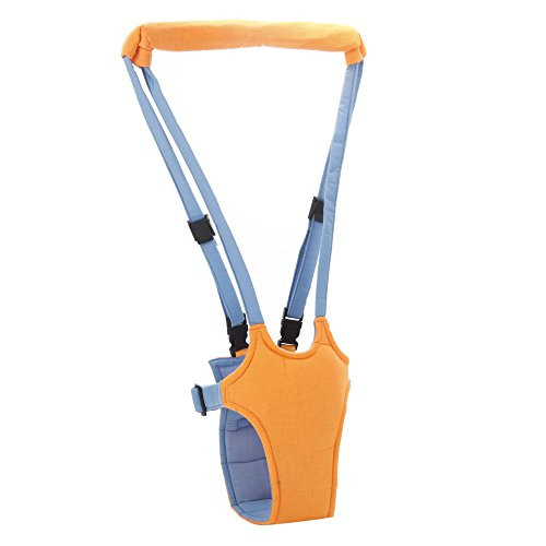Walking Wings Safety Harness