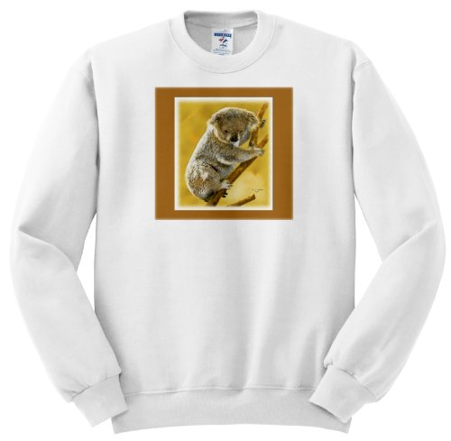 Baby Koala Images front-1049080