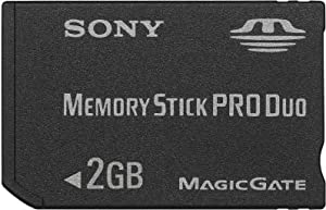 Sony 2GB Memory Stick PRO Duo