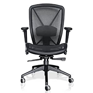 Allseating Allseating Ergonomic Mesh Chair With Lumbar Support A