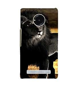 PrintVisa Black Lion Animal Design 3D Hard Polycarbonate Designer Back Case Cover for YU Yuphoria