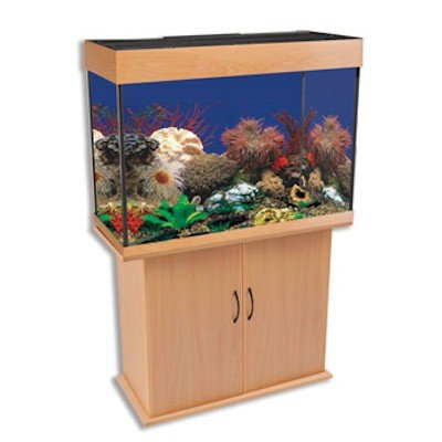 Corner fish tank delta queen iii 58 gallon rectangular for 38 gallon fish tank