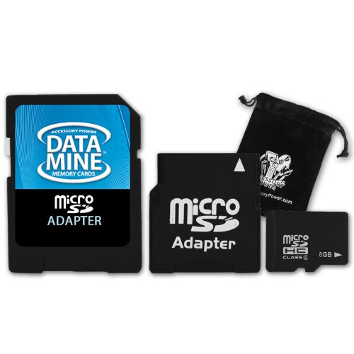 Blazing 8GB MicroSD Memory Card with MiniSD & StandardSD Adapters for Nintendo DSi ***Includes Accessory Bag***