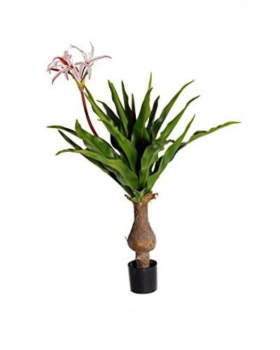 Crinum Con Flor Artificial