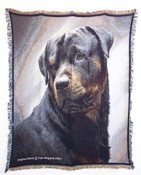 Rottweiler Portrait Afghan Throw Blanket Rottwielers