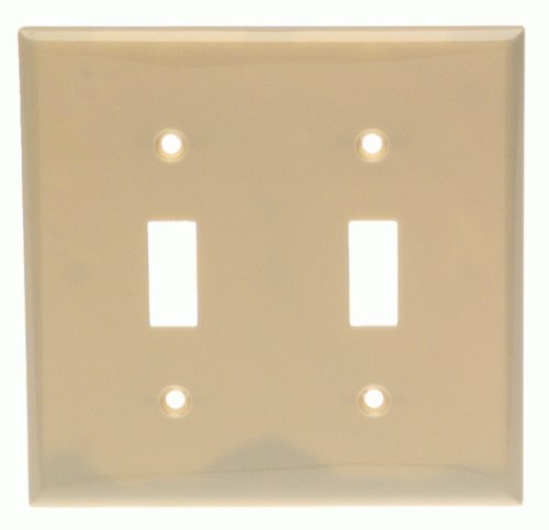 Cooper Wiring 5139VBOX Double Gang Nylon Switch Wall Plate-IV SWITCH WALL PLATE