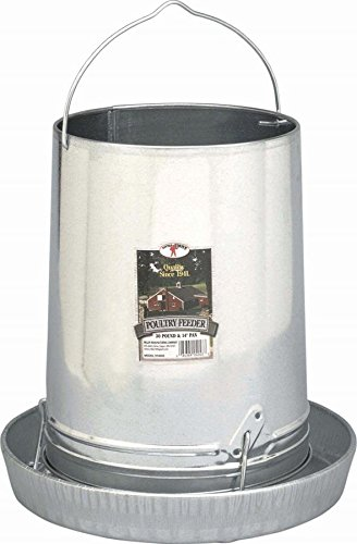 Hanging Poultry & Gamebird Feeder with Feed Pan, 30 Lb Galvanized Steel (Tube Chicken Feeder compare prices)