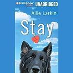 Stay: A Novel | Allie Larkin