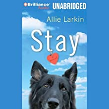 Stay: A Novel (       UNABRIDGED) by Allie Larkin Narrated by Julia Whelan