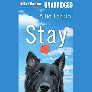 Stay: A Novel | [Allie Larkin]