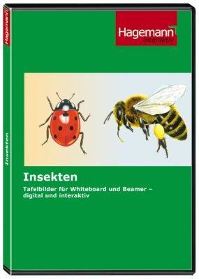 insekten interaktive tafelbilder auf cd rom f r pc beamer und whiteboard hagemann 191850. Black Bedroom Furniture Sets. Home Design Ideas