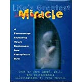 Life's Greatest Miracle: A Photomontage Celebrating Human Development from Conception to Birth ~ Marc Lappe