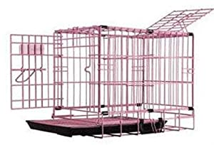 Pet Tek DPK86011 Dream Crate Professional Series 100 Dog Crate with Mesh Floor, 19 by 12 by 15-Inch, Pink