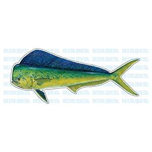 DOLPHIN -Fish Decal- window sticker mahi mahi fishing