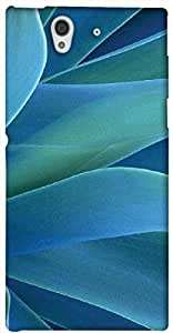 Timpax protective Armor Hard Bumper Back Case Cover. Multicolor printed on 3 Dimensional case with latest & finest graphic design art. Compatible with only Sony L36H - Sony 36. Design No :TDZ-20440