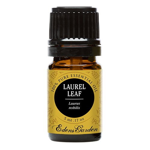 Laurel Leaf 100% Pure Therapeutic Grade Essential Oil by Edens Garden- 5 ml