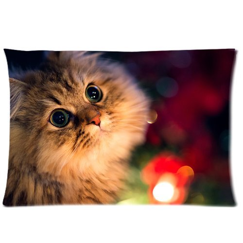 Cute Cat Beds 4197 front