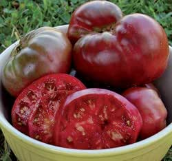 Black Krim Tomato Seeds ► ORGANIC HEIRLOOM NON-GMO ◄ Rare Russian Black Krim (PowerGrow Systems Pack of 30+ Seeds)