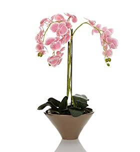 Artificial Orchid in Triangle Ceramic Pot