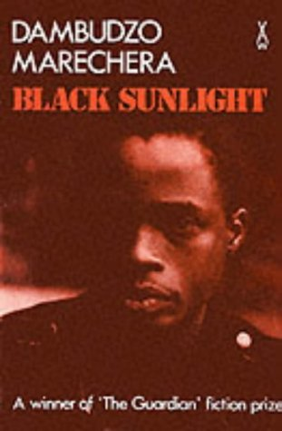 Black Sunlight (African Writers Series)