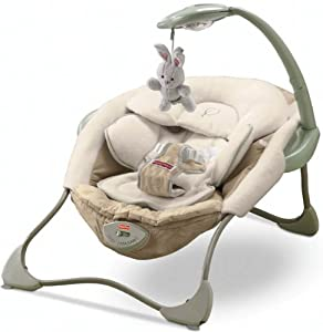 Amazon.com : Fisher-Price Papasan Seat : Infant Bouncers