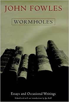 Essay on wormholes