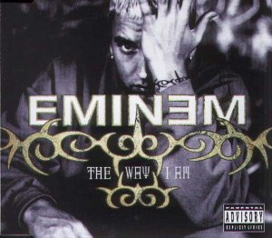 Eminem - THE WAY I AM (TIME OF YOUR LIF - Zortam Music
