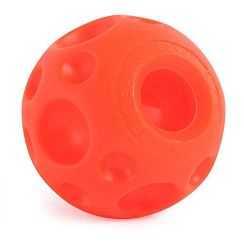Large, Soft, Pliable Textured Vinyl Surface Treat Ball by Omega Paw (Omega Ball compare prices)