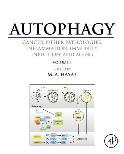 Autophagy: Cancer, Other Pathologies, Inflammation, Immunity, Infection, And Aging: Volume 3 - Role In Specific Diseases