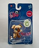 Littlest Pet Shop - #1516 Hund - OVP