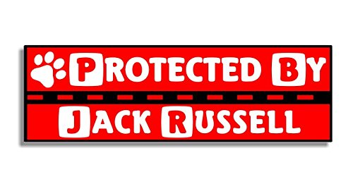 Protected By Jack Russell - Car Bumper Sticker / Auto Aufkleber / Window Door Dog / Hund Sign Decal
