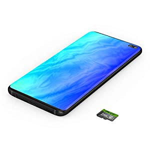 PNY 256GB Elite Class 10 U1 MicroSDXC Flash Memory Card, Up to 100MB/S Read Speed (Tamaño: 256GB)