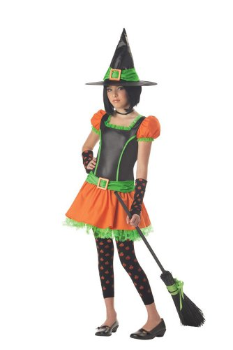 Sassy Pumpkin Witch Adult Costume Size X-Large