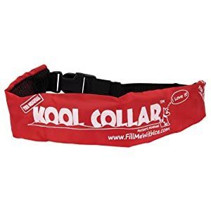 Kool Collar - Medium in Red (Includes one Kool tube) by Innovating Pet Products