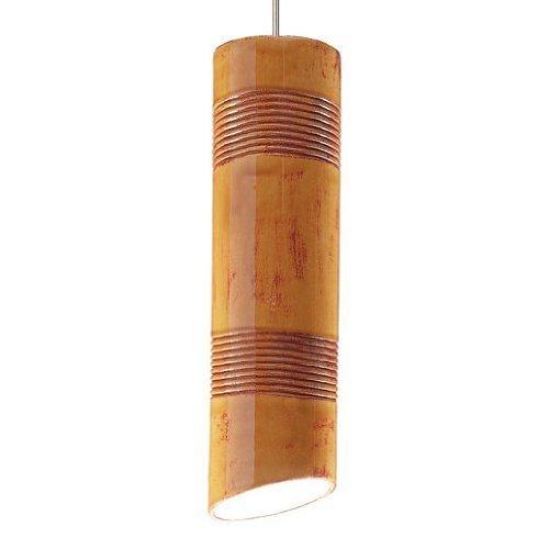 Raindance 1 Light Mini Pendant Finish: Desert Blaze, Canopy and Transformer: Without