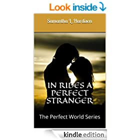 In Rides A Perfect Stranger (The Perfect World Series Book 3)