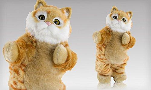 dancing-cat-speaker-brown