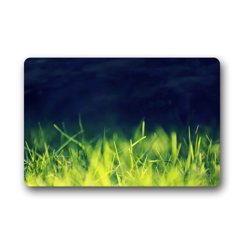 "Anhome Green Weeds Ruderal Short Grass Like Green Smoke Doormats 23.6""X 15.7"" front-883853"