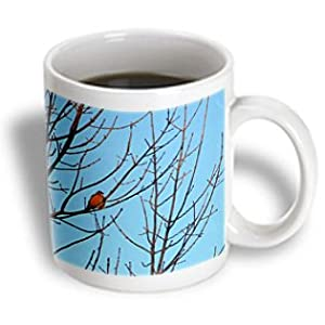 Beverly Turner Bird Photography - Red Robin in Tree - 11oz Mug (mug_29640_1)