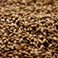 Briess 2-Row Caramel 40L Crushed Malt - 1 lb. Bag from Briess