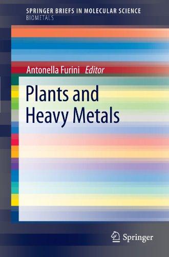 Plants and Heavy Metals (SpringerBriefs in Molecular Science / SpringerBriefs in Biometals)