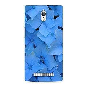 Ajay Enterprises Wo Blue Flower Bush Back Case Cover for Oppo Find 7