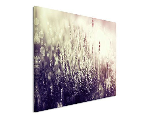 120-x-80-cm-cuadro-de-foto-lienzo-de-la-imagen-en-colour-malva-florecimiento-del-arbol-de-flores-de-
