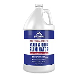 Professional Strength Stain & Odor Eliminator - Enzyme-Powered Pet Odor & Stain Remover for Dog and Cat Urine - (1 gallon)