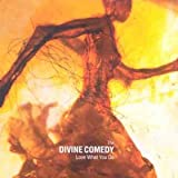 Love What You Do [CD 2]by The Divine Comedy