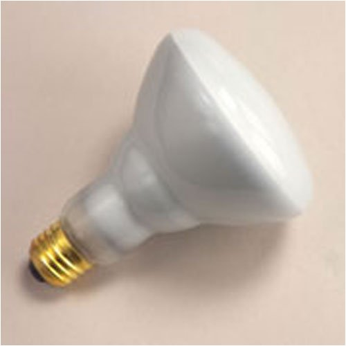 2 Pack 3000-Kelvin 2GX13 base 800 Series Warm White 40 Watt Circline Fluorescent T5 Bulb 12-Inch Diameter
