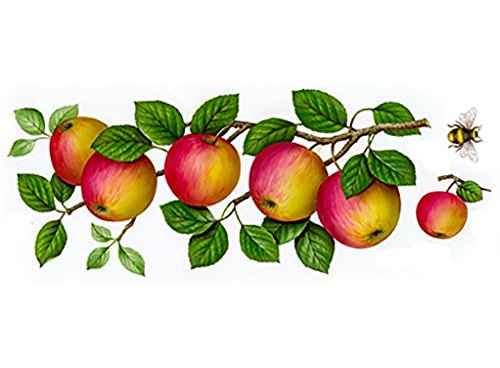 T219 Wild Apple Wraps Waterslide Ceramic Decals By The Sheet (7 1/2
