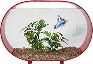 2 gallon fish bowl for 2 gallon fish bowl